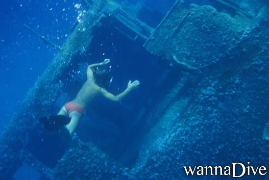 Wreck of pomonte duiken in elba italy for Porno dive italia